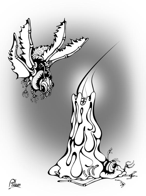 papillons Icare palpés par la lumière d'une bougie