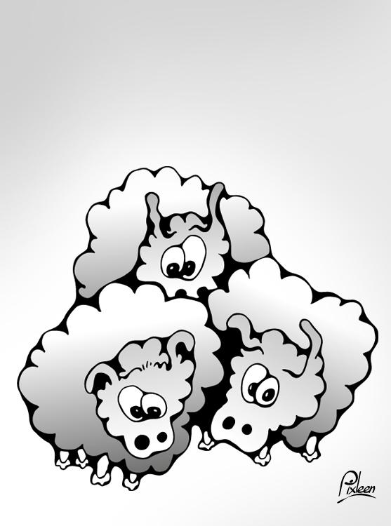 3 moutons plein de surprise